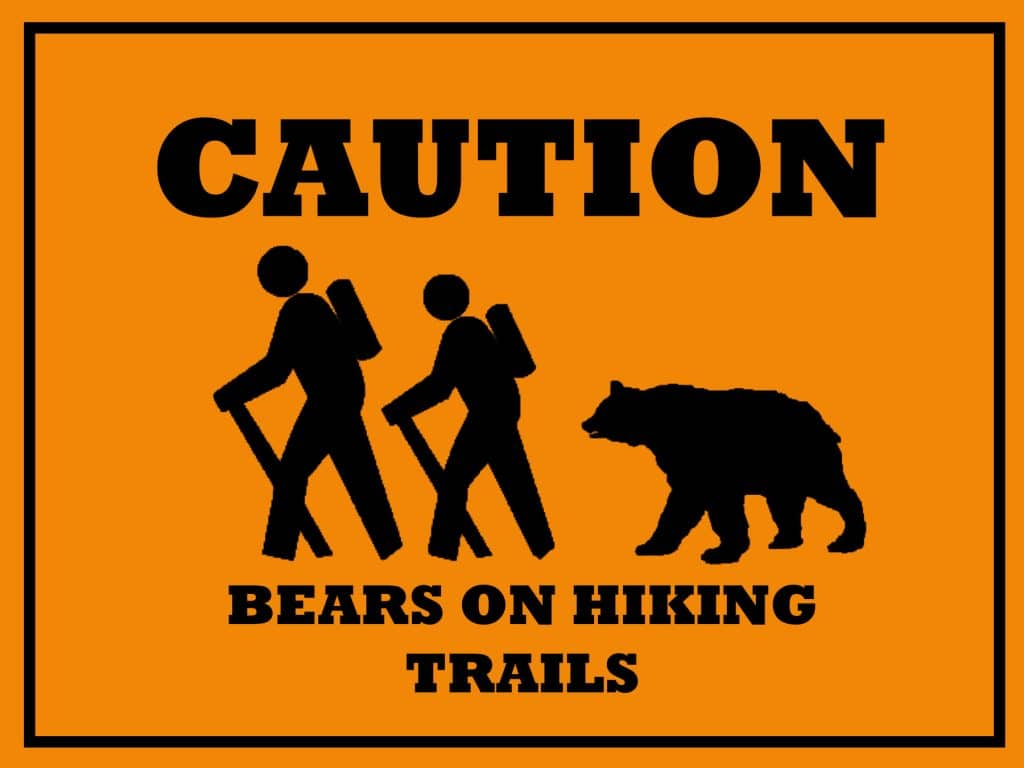 morguefile-file4271283961107-bears-on-trails.jpg