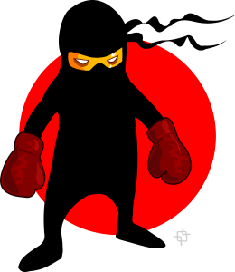 pixabay-ninja-warrior-boxer-154200_1280.png